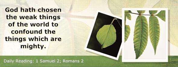 http://bibletruthpublishers.com/DailyLight/wp-content/uploads/dl-hdg-2014-448.jpg