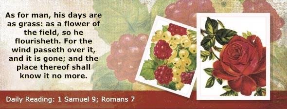 http://bibletruthpublishers.com/DailyLight/wp-content/uploads/dl-hdg-2014-458.jpg