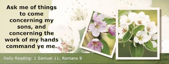 http://bibletruthpublishers.com/DailyLight/wp-content/uploads/dl-hdg-2014-462.jpg