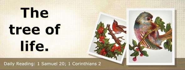 http://bibletruthpublishers.com/DailyLight/wp-content/uploads/dl-hdg-2014-480.jpg