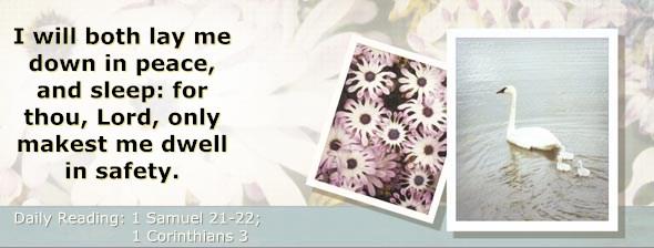 http://bibletruthpublishers.com/DailyLight/wp-content/uploads/dl-hdg-2014-482.jpg