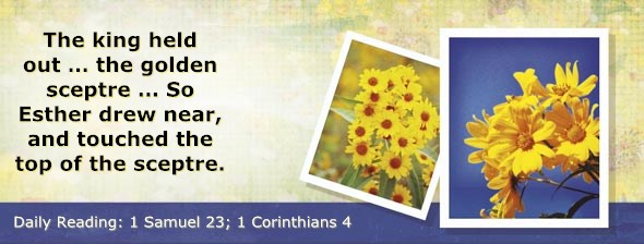 http://bibletruthpublishers.com/DailyLight/wp-content/uploads/dl-hdg-2014-483.jpg