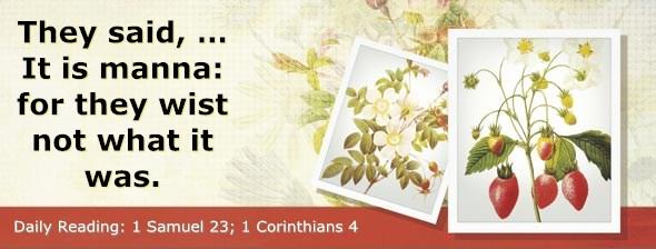http://bibletruthpublishers.com/DailyLight/wp-content/uploads/dl-hdg-2014-484.jpg