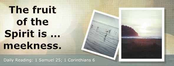 http://bibletruthpublishers.com/DailyLight/wp-content/uploads/dl-hdg-2014-487.jpg