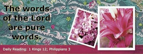 http://bibletruthpublishers.com/DailyLight/wp-content/uploads/dl-hdg-2014-564.jpg