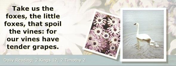 http://bibletruthpublishers.com/DailyLight/wp-content/uploads/dl-hdg-2014-606.jpg