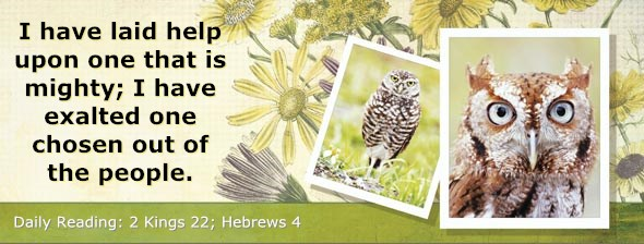 http://bibletruthpublishers.com/DailyLight/wp-content/uploads/dl-hdg-2014-625.jpg