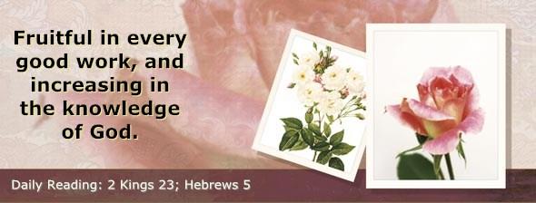 http://bibletruthpublishers.com/DailyLight/wp-content/uploads/dl-hdg-2014-627.jpg