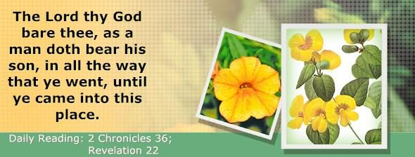 http://bibletruthpublishers.com/DailyLight/wp-content/uploads/dl-hdg-2014-729.jpg