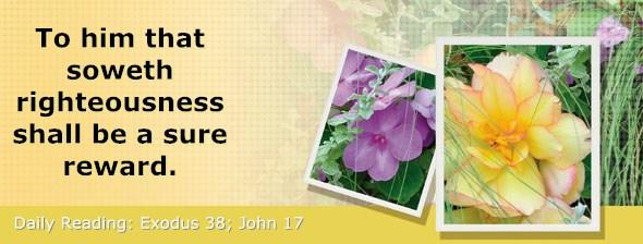 http://bibletruthpublishers.com/DailyLight/wp-content/uploads/dl-hdg-2015-171.jpg