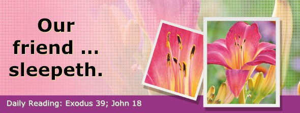 http://bibletruthpublishers.com/DailyLight/wp-content/uploads/dl-hdg-2015-174.jpg