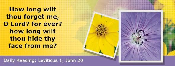 http://bibletruthpublishers.com/DailyLight/wp-content/uploads/dl-hdg-2015-178.jpg