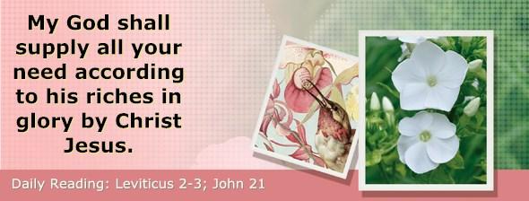 http://bibletruthpublishers.com/DailyLight/wp-content/uploads/dl-hdg-2015-179.jpg