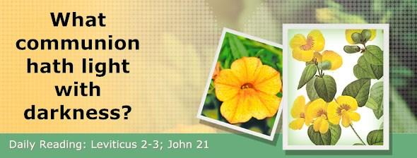 http://bibletruthpublishers.com/DailyLight/wp-content/uploads/dl-hdg-2015-180.jpg