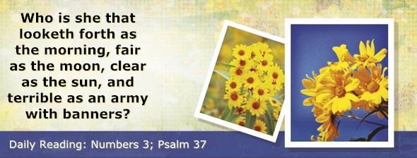 http://bibletruthpublishers.com/DailyLight/wp-content/uploads/dl-hdg-2015-232.jpg
