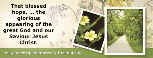 http://bibletruthpublishers.com/DailyLight/wp-content/uploads/dl-hdg-2015-238.jpg