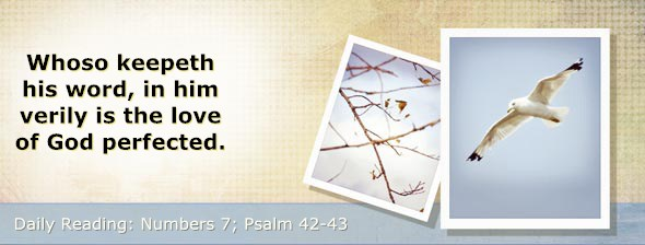 http://bibletruthpublishers.com/DailyLight/wp-content/uploads/dl-hdg-2015-239.jpg