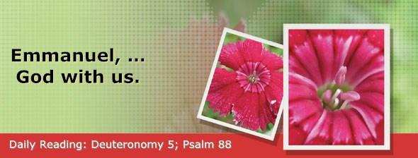 http://bibletruthpublishers.com/DailyLight/wp-content/uploads/dl-hdg-2015-304.jpg