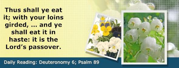 http://bibletruthpublishers.com/DailyLight/wp-content/uploads/dl-hdg-2015-305.jpg