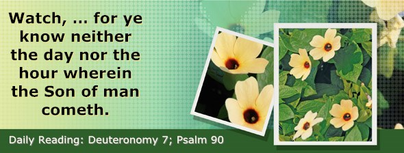 http://bibletruthpublishers.com/DailyLight/wp-content/uploads/dl-hdg-2015-307.jpg