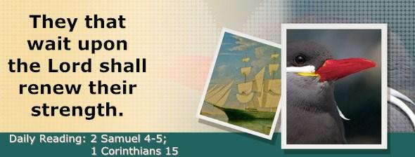 http://bibletruthpublishers.com/DailyLight/wp-content/uploads/dl-hdg-2015-506.jpg