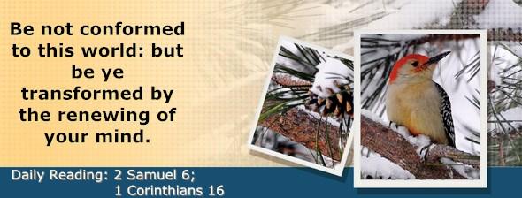 http://bibletruthpublishers.com/DailyLight/wp-content/uploads/dl-hdg-2015-507.jpg