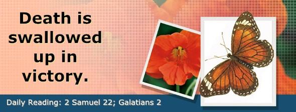 http://bibletruthpublishers.com/DailyLight/wp-content/uploads/dl-hdg-2015-538.jpg
