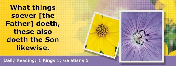 http://bibletruthpublishers.com/DailyLight/wp-content/uploads/dl-hdg-2015-544.jpg
