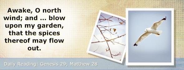 http://bibletruthpublishers.com/DailyLight/wp-content/uploads/dl-hdg-2016-056.jpg
