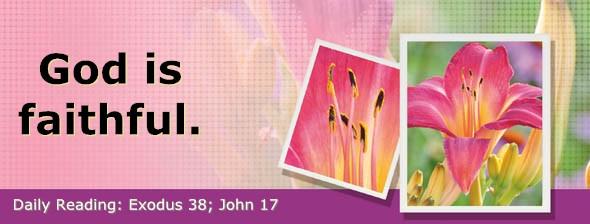 http://bibletruthpublishers.com/DailyLight/wp-content/uploads/dl-hdg-2016-174.jpg
