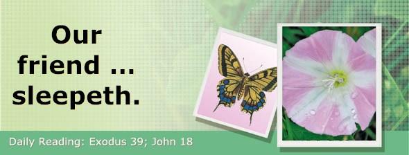 http://bibletruthpublishers.com/DailyLight/wp-content/uploads/dl-hdg-2016-176.jpg