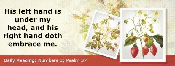 http://bibletruthpublishers.com/DailyLight/wp-content/uploads/dl-hdg-2016-233.jpg