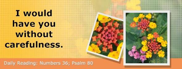 http://bibletruthpublishers.com/DailyLight/wp-content/uploads/dl-hdg-2016-296.jpg