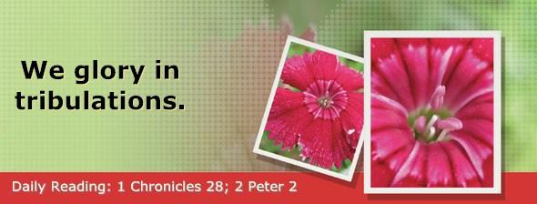 http://bibletruthpublishers.com/DailyLight/wp-content/uploads/dl-hdg-2016-670.jpg