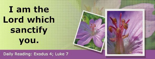 http://bibletruthpublishers.com/DailyLight/wp-content/uploads/dl-hdg-2017-103.jpg