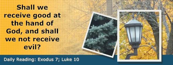 http://bibletruthpublishers.com/DailyLight/wp-content/uploads/dl-hdg-2017-110.jpg