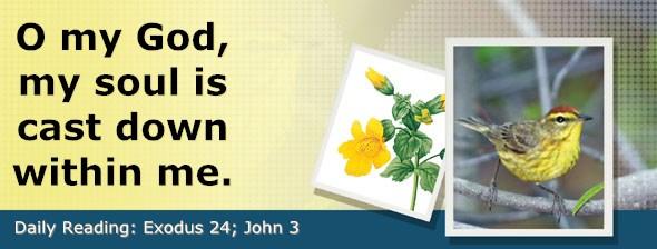 http://bibletruthpublishers.com/DailyLight/wp-content/uploads/dl-hdg-2017-144.jpg