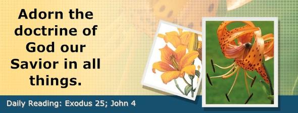 http://bibletruthpublishers.com/DailyLight/wp-content/uploads/dl-hdg-2017-145.jpg