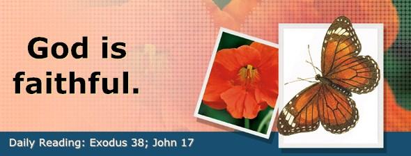 http://bibletruthpublishers.com/DailyLight/wp-content/uploads/dl-hdg-2017-172.jpg