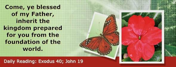 http://bibletruthpublishers.com/DailyLight/wp-content/uploads/dl-hdg-2017-175.jpg