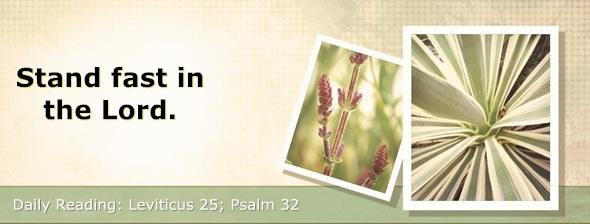 http://bibletruthpublishers.com/DailyLight/wp-content/uploads/dl-hdg-2017-221.jpg