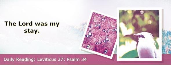http://bibletruthpublishers.com/DailyLight/wp-content/uploads/dl-hdg-2017-225.jpg