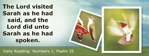 http://bibletruthpublishers.com/DailyLight/wp-content/uploads/dl-hdg-2017-227.jpg