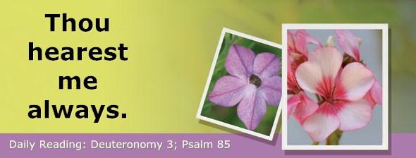 http://bibletruthpublishers.com/DailyLight/wp-content/uploads/dl-hdg-2017-300.jpg