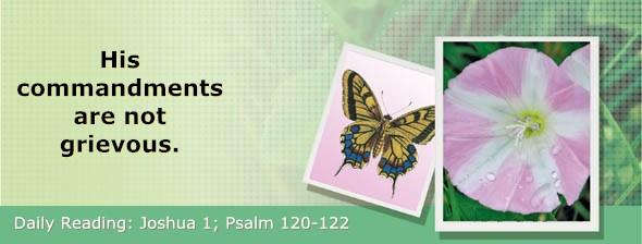 http://bibletruthpublishers.com/DailyLight/wp-content/uploads/dl-hdg-2017-359.jpg