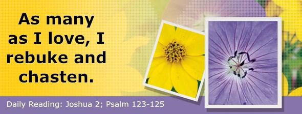 http://bibletruthpublishers.com/DailyLight/wp-content/uploads/dl-hdg-2017-361.jpg