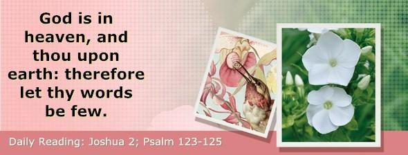 http://bibletruthpublishers.com/DailyLight/wp-content/uploads/dl-hdg-2017-362.jpg