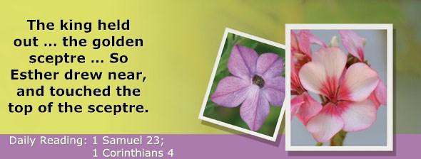 http://bibletruthpublishers.com/DailyLight/wp-content/uploads/dl-hdg-2017-483.jpg
