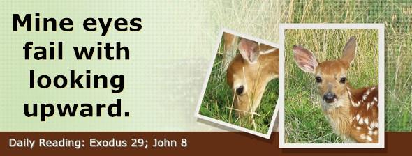 https://bibletruthpublishers.com/DailyLight/wp-content/uploads/dl-hdg-2018-153.jpg