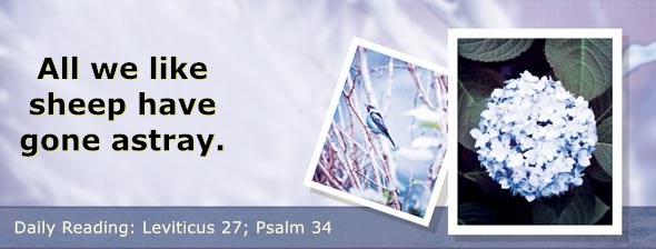https://bibletruthpublishers.com/DailyLight/wp-content/uploads/dl-hdg-2018-226.jpg